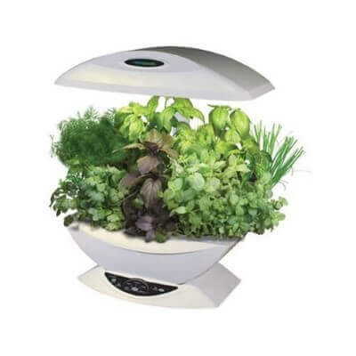 AeroGarden 7-Pod Indoor Garden