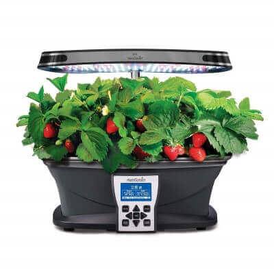 AeroGarden ULTRA LED with Strawberry Grow Bowl