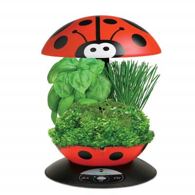 AeroGarden 3-Pod Indoor Garden with Gourmet Herb Seed Kit, Ladybug