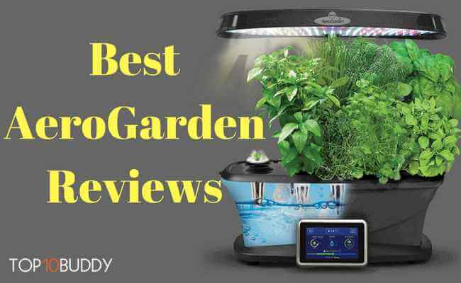 Best AeroGarden Reviews